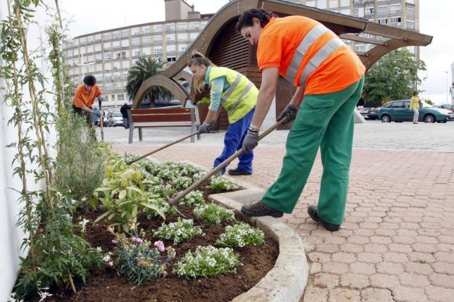 Mantenimiento de jardines en canc n y playa del carmen for Mantenimiento de jardines